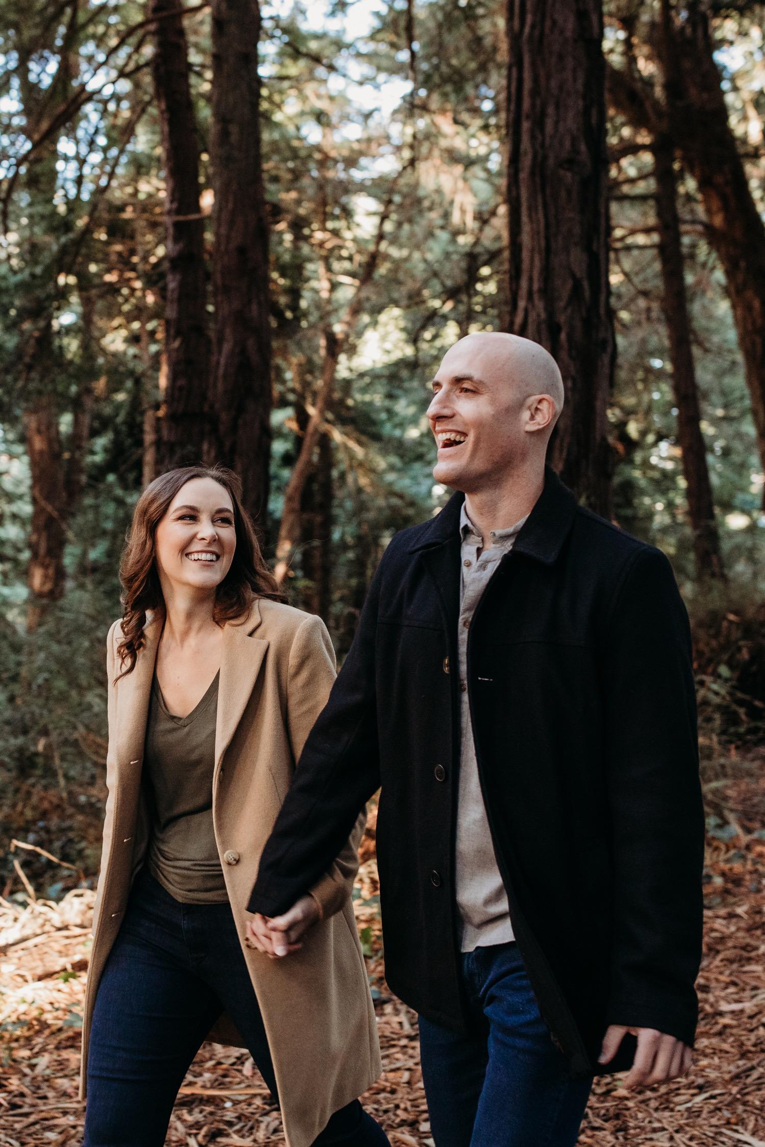 Redwoods at Golden Gate Park